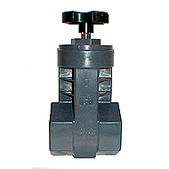 "Gate Valve Reducer, 2"" Gray, Socket Praher"